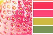 Color Pallets / by Elizabeth Haney
