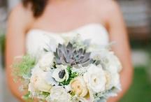 Dream wedding / by Cathy Evans