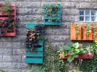 Pallets / crates  / by Michelle Sherrill