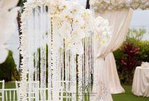 Wedding Bells  / by Michelle Hickham