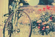 Things we like / by Miele_bikes