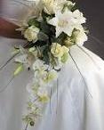 white wedding flowers / by Toni Smith