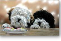 Tibetan Terriers / by jan martes