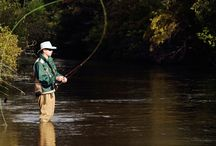 Fly Fishing / by Philip VanS