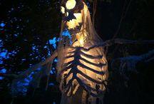 Halloween/Fall / by Jackie Scanlan