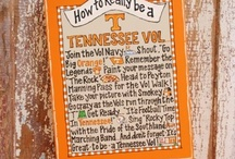 go vols / by Mandy Lowe