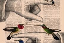 Inspiration Birds / by lynn jarzombeck