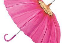 Umbrellas / by Cathy Dietz
