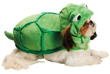 Halloween Pet Costumes / Dress up your pet for Halloween with these great outfits! / by Newsday (Long Island)