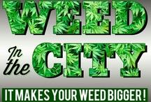 Marijuana artwork / by Weed in the City