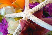 Wedding Ideas / by Amy Flowers