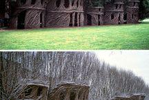 Tree houses!!! / by Ashley Boyce