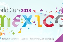 World Cup 2013 / by enactus