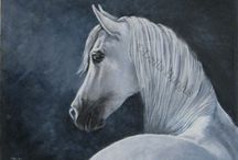 EQUINE ART / by Donna Brown
