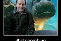 Photobomber Extraordinaires / by Fracture