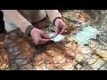Folding Money / by Janice Nilges