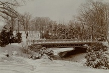Winter in America / Historic images of winter and snow! / by American Heritage Chocolate