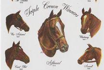 Horse Racing / by Johnathan Watson