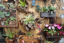 ✿ GARDEN & IDEAS Ⅱ ✿ / by Consuelo Cavalcanti