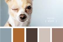 color love / by Emily Schmidt
