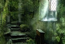 abandoned / by Rebecca Littlefield