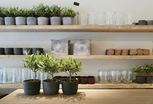Design and Decor / by Cici