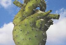 Mexico lindo / by Leticia Siañez