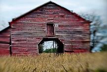 old barns / by Akua Kumah