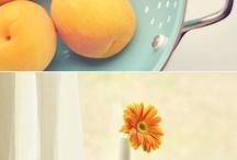 home | paint / by kari
