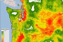 EcoWest Human Footprint / by Mitch Tobin