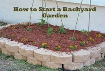 Plant me a garden! / by Megan McGowan Tolbert