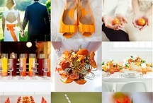 Color and Mood boards / by Amy Kathleen