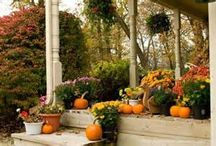 Thanksgiving Decor Outdoors / Decorations / by Ruth R