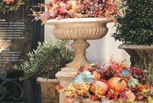 Fall Decorating / by Wanda Waterfield