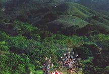 Amusements  / fairs, circus, carnivals, parades, picnics, arcades, games, ice capades, redoes,  / by Chere Brown