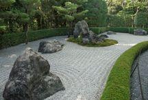Japanese rock garden / by Lyenna Kobayashi