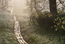 PLACES / by Audrey Le Noan