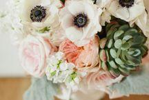 Bouquets / by Bernie Loggerenberg