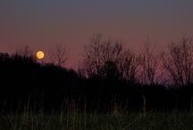 full moon / by Akua Kumah