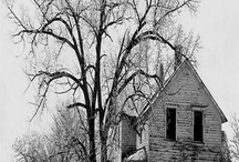 love old houses / by SD Hatcher