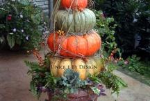 Autumn / by Katherine Kennedy