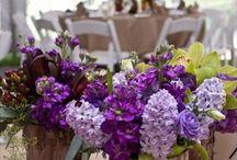 Wedding Decorations / by Loysi Baumgartner