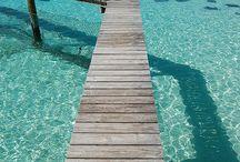Bahamas!! ☀️ / by Felicia Henson