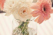 Wedding! / by Shianne Stoffel