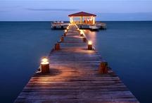 take me there ~ / by Loretta Cohen