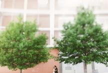 Wedding Photos I love / by Caitlin McWeeney