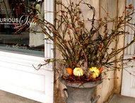 Fall Decorating / by Kelly McHugh