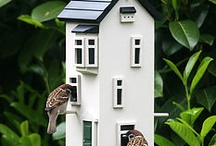 Bird house or feeders! (DIY) / by Amy K