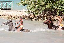 Jamaica / by Gillian Duffy