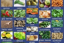 Amino Acids / Uses and Benefits / by Lola Boudreaux